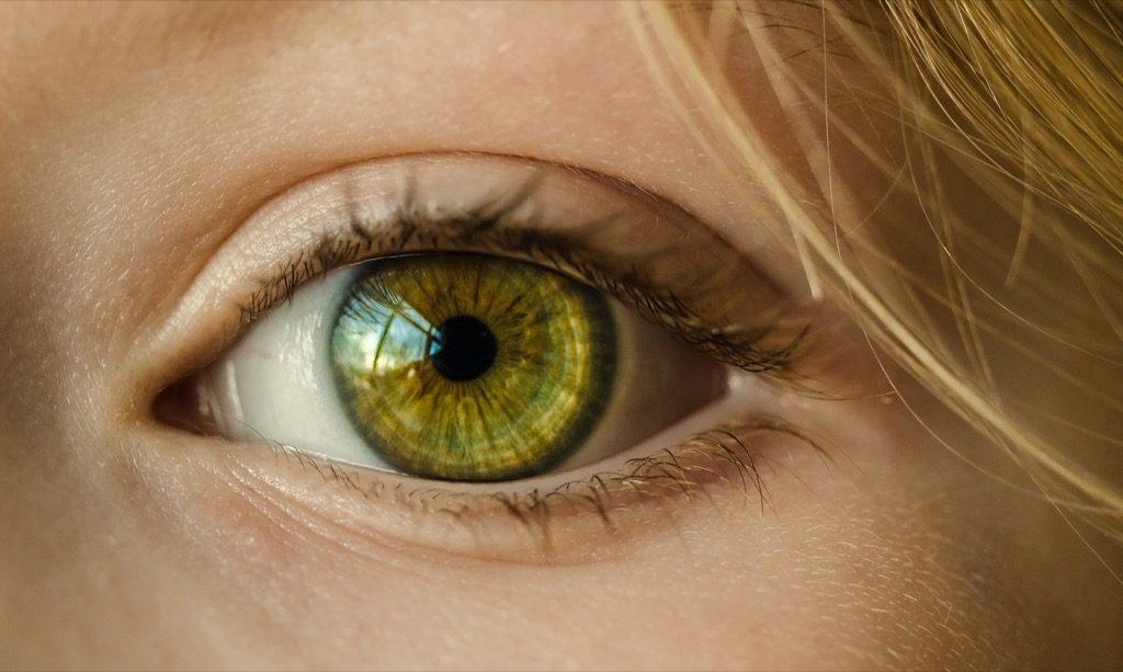Parche de terapia de células madre para la degeneración macular ve la luz del día