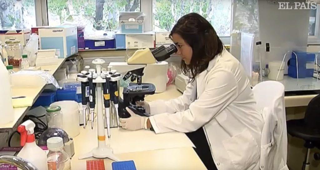 Segundo paciente sin rastro de VIH tras un trasplante de células madre