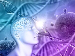 Desde la recuperación de la vista hasta la reversión del daño cerebral, los investigadores de Células Madre de USC están haciendo descubrimientos que cambian la vida.
